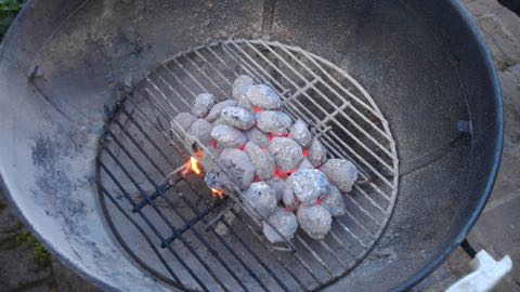 Charcoal for grilling